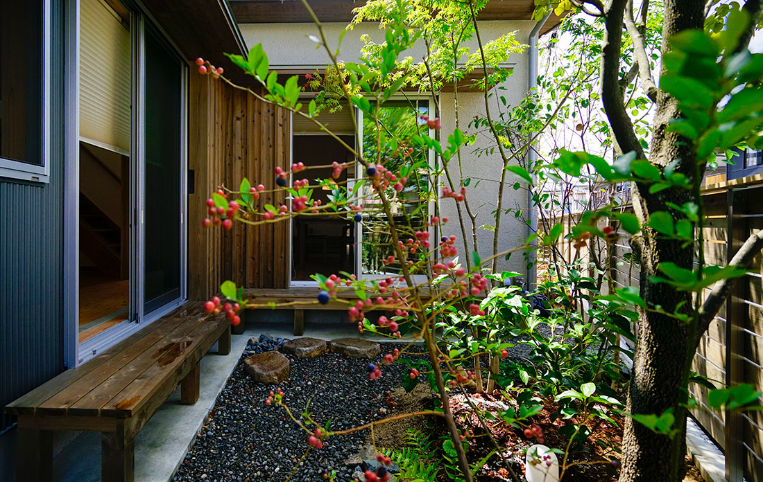 富塚の家 西側庭